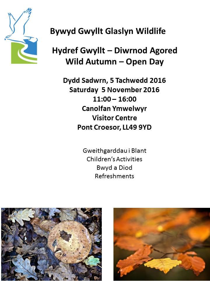 bggw-hydref-gwyllt-2016