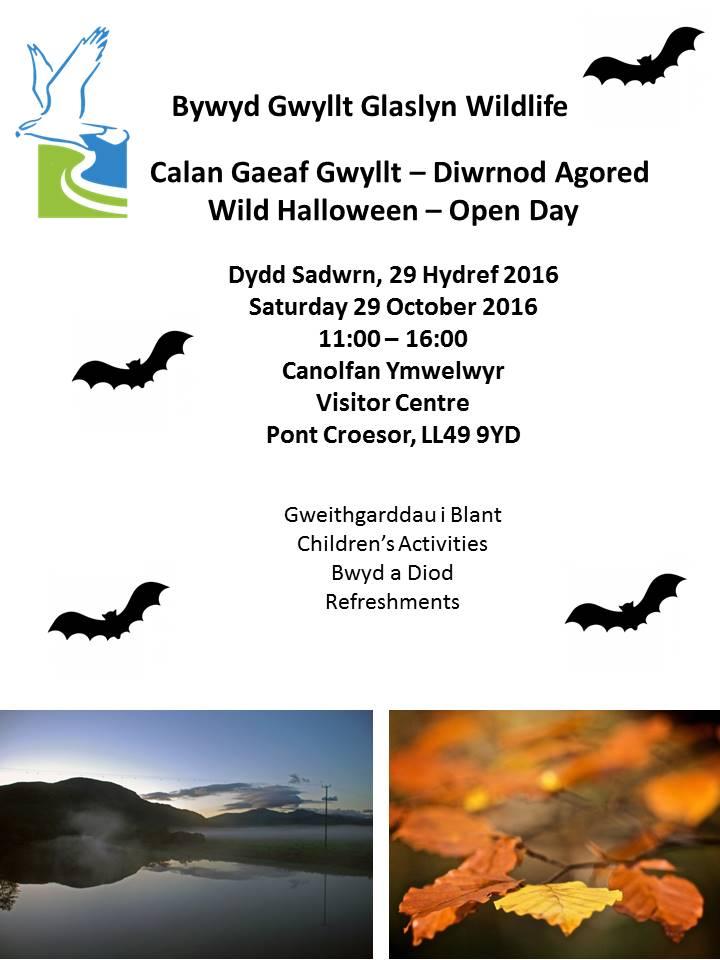 bggw-wild-halloween-2016