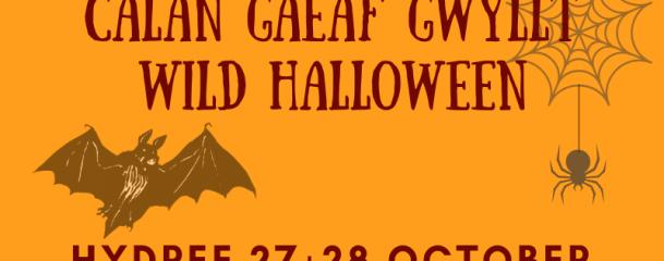 calan gaeaf gwylltwild halloween
